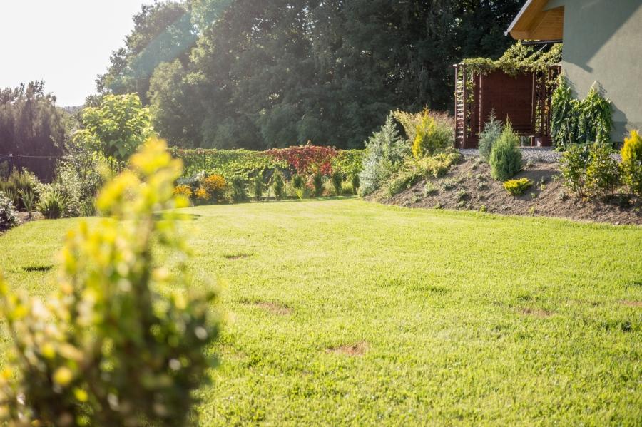 Projektowanie ogrodów – pracaarchitekta